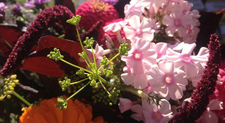Blumendetail